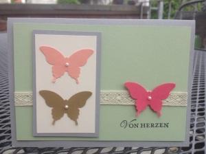InColor Schmetterlinge (3)