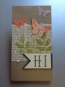 Kellnerblock mit Schmetterlingen (1)