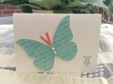 Zauberhafter Schmetterling (5)
